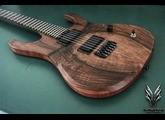 Hufschmid Guitars H6 Grafted Walnut top