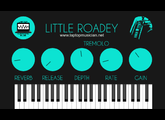 Laptop Musician Blog Little Roadey