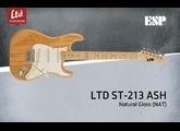 LTD ST-213 Ash / Maple