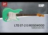 LTD ST-213 Rosewood