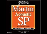 Martin & Co SP 92/8 Phosphor Bronze