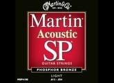 Martin & Co SP 92/8 Phosphor Bronze MSP4100 Light 12-54
