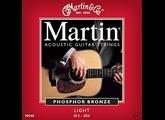 Martin & Co Traditional 92/8 Phosphor Bronze M540 Light 12-54