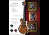 Michael Kelly Guitars Patriot Premium