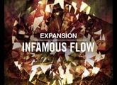 Native Instruments Infamous Flow