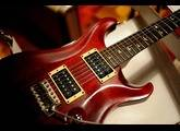 PRS Std 24 20th anniversary