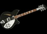 Rickenbacker 360/12