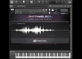 Sample Logic Loop Session Series - Rhythmology