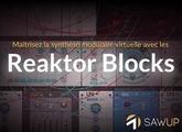 SawUp Maîtriser la synthèse modulaire virtuelle avec les Reaktor Blocks