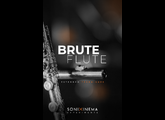 Sonixinema Brute Flute - Extended Techniques