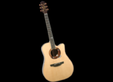 Takamine LTD2003 Bald Eagle