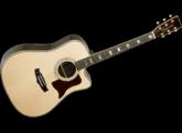 Tanglewood TW1000 H SRC B
