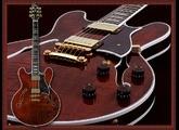 Vends guitare heritage H 555
