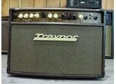 Traynor Acoustic Master Studio