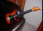 Valley Arts Guitars Custom Pro USA (strat)