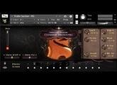 Versilian Studios Chamber Orchestra 2