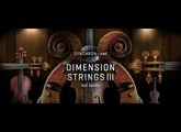 VSL (Vienna Symphonic Library) Synchron-ized Dimension Strings III