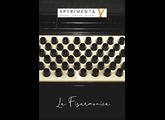 Xperimenta Project La Fisarmonica