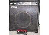Yamaha B100-112