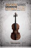 8dio Grandiose Ensemble Violins