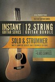 8dio Instant 12-String Guitar Bundle