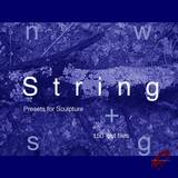 9 Soundware String