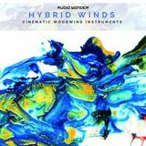 Audio Wonder Hybrid Winds