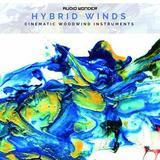 Audio Wonder Hybrid Winds