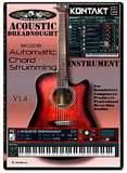 Audiowarrior Acoustic Dreadnought
