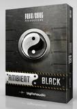 Big Fish Audio Ambient Black