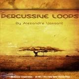 Bluezone Percussive Loops