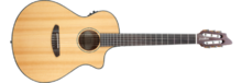 Breedlove Pursuit Nylon CE