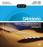 D'Addario EXP Coated Phosphor Bronze Acoustic Bass