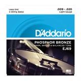 D'Addario Phosphor Bronze Wound Banjo