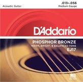 D'Addario Phosphore Bronze Wound - EJ17-B25