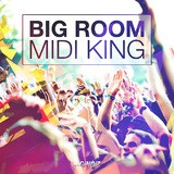 Diginoiz Big Room – Midi King