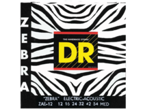Dr Strings Zebra ZAE12