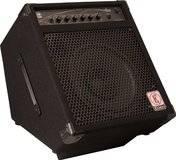 Eden Bass Amplification E12