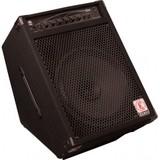 Eden Bass Amplification E15