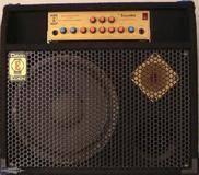 Eden Bass Amplification WT-300 TC12