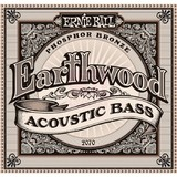 Ernie Ball Earthwood Acoustic Bass