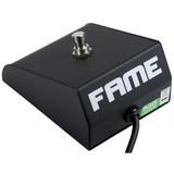 Fame FS100