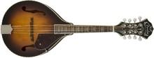 Fender Concert Tone