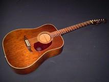 Fender Newporter [1983-1985]