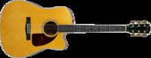 Fender Pro Custom TPDCE-1 Dreadnought