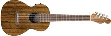 Fender Rincon