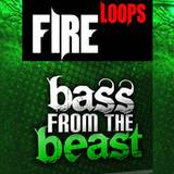 Fireloops Bass From The Beast
