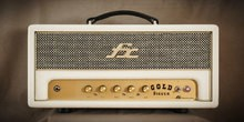 FX Amplification Gold Digger