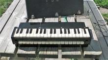 Georges Jenny Pianoline