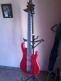 Gibson V Bass
